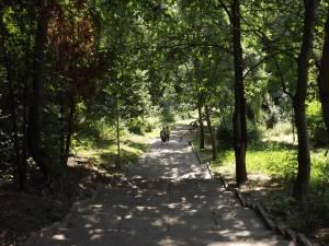Parcul Șipote ar putea fi transformat într-o cautată zonă de agrement, daca va fi transferat la Primărie