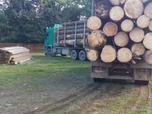 Transport de lemn cu acte expirate, confiscat de poliţişti
