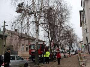 Copacii din fața blocului au îngreunat mult intervenția de îndepărtare a țiglelor desprinse de pe acoperiș