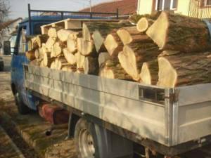 Autoutilitară confiscată de poliţişti pentru că transporta lemn fără acte