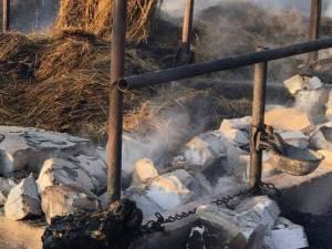 Focul a făcut pagube importante proprietarului fermei de animale, care a suferit un prejudiciu de circa 500.000 de lei