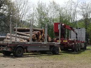 Transportul de lemn