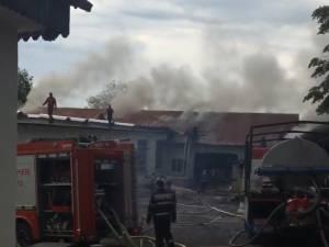 Un puternic incendiu a distrus o hală a unei societăţi comerciale din Fălticeni