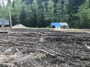 Mizeria şi dezastrul ecologic dintr-o pădure de la Suceviţa