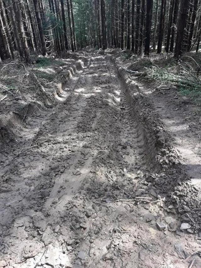 Drumul de acces în satul Cununschi, transformat într-o mocirlă