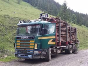 Autocamionul încărcat cu material lemnos