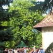 Pelerinii au înfruntat căldura, dar şi ploaia care a urmat şi s-au rugat neîncetat Sfântului Ioan cel Nou de la Suceava