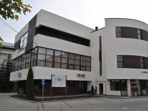 CCI Suceava a început centralizarea necesarului de lemn al producătorilor de mobilă din judeţ