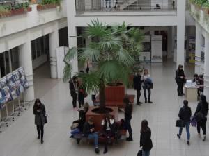 Studenţii Universităţii din Suceava vor ca rezultatele evaluărilor profesorilor să fie publice