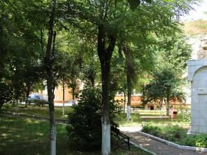 """Parcul Școlii """"Ion Creangă"""" Suceava"""