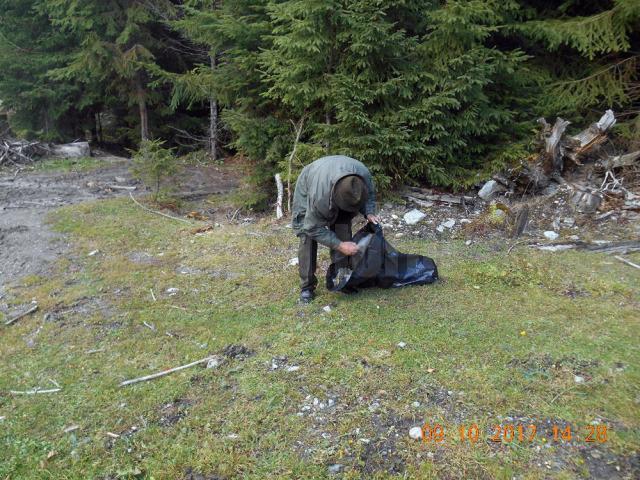 A început salubrizarea pădurii împânzite cu gunoaie