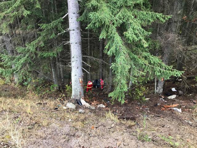 Pompierii au găsit maşina în pădure