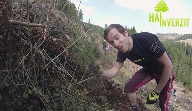 Acţiune de împădurire