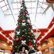 Shopping City Suceava şi-a premiat câştigătorii
