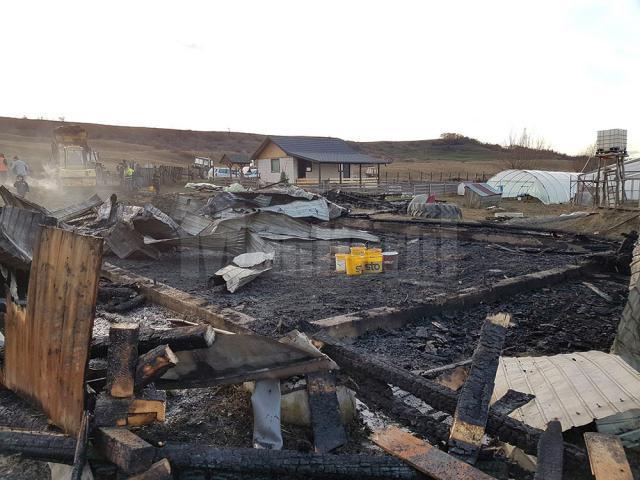 Ce a rămas după incendiul de la Horodniceni în care a ars un saivan de oi