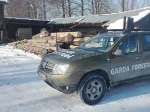 Mașină a Gărzii Forestiere Suceava