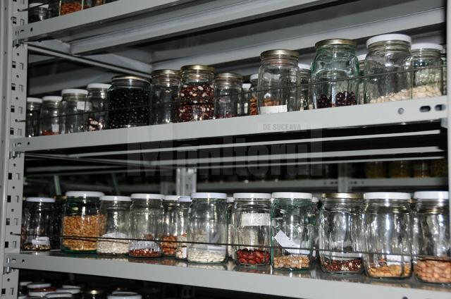 Roşii şi fasole cu gustul de altădată păstrate în Banca de Gene Suceava, cerute de aproape 2.000 de cultivatori din ţară
