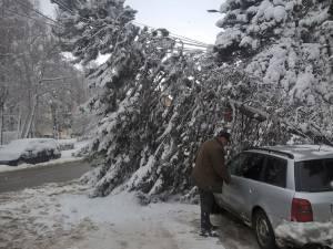 Un şofer norocos, ieri dimineaţă, în zona centrală a Sucevei
