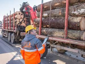 Sistemul de urmărire prin GPS a materialului lemnos, Timflow, permite Holzindustrie Schweighofer să monitorizeze traseul fiecărui camion ce livrează buştean de la punctul de încărcare până la poarta fabricii