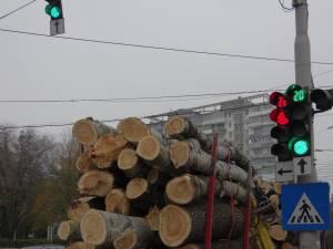 Transport de lemn de lucru rasinoase