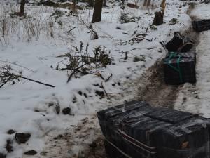 Polițiștii de frontieră au descoperit cinci colete voluminoase cu țigări