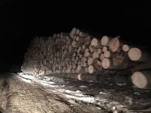 Tăieri de arbori pe masivul Rarău, semnalate Gărzii Forestiere Suceava