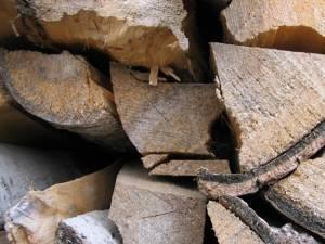 Întreaga cantitate de 27,72 metri cubi de lemn de fag, în valoare de 3.825,36 lei, a fost confiscată