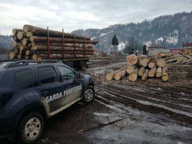 Amenzi de 150.000 de lei, aplicate de Garda Forestieră Suceava de la începutul lunii martie