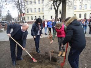 """""""Stejarul centenarului"""", plantat la Școala Gimnazială """"Petru Mușat"""""""