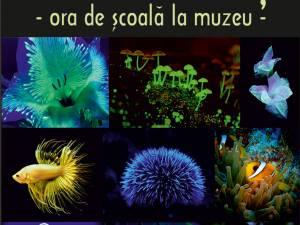 """Lecţia muzeală """"Bioluminiscența în lumea vie"""", la Muzeul de Ştiințele Naturii"""