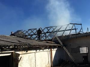 Incendiul a distrus peste 250 de metri pătraţi din adăpostul de animale