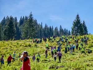 Aproape 600 de voluntari au plantat 6.340 de puieți de molid, brad și larice în Călimani