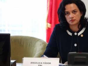 Agelica Fădor: PSD şi ALDE se pregătesc să dea jaful secolului prin naţionalizarea banilor în pilonul II de pensii