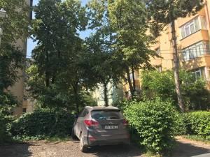 PSD anunţă că va vota pentru reabilitarea a 238 de parcări, din cele 342 propuse de Harşovschi, în municipiul Suceava