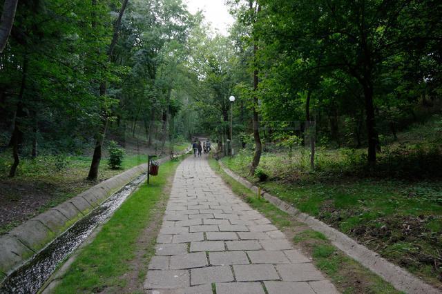 Preluarea parcului Şipote de către Primăria Suceava, blocată în Parlament