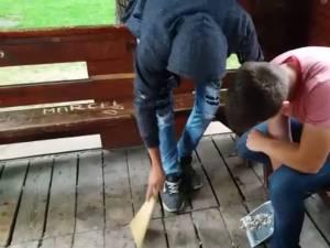 Tineri care au făcut mizerie pe spațiul public, puși să facă curat, de Poliția Locală Suceava