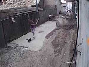 Pisică omorâtă cu bâta în Burdujeni