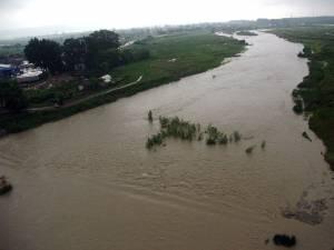 Malurile râului Suceava