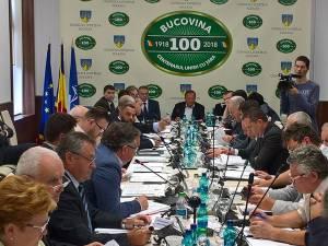 Şedinţa Consiliului Judeţean din 28 iunie 2018