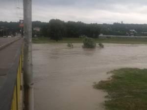 Râul Suceava, în municipiul Suceava