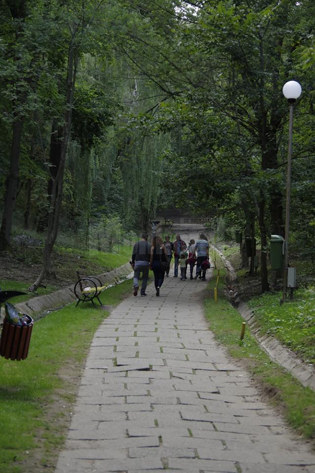 Primarul Sucevei, bucuros că parcul Şipote şi pădurea Zamca vor putea fi amenajate ca zone de agrement