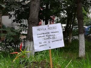 """Monument al indolenței"""" ridicat pe mormântul neputinței, dedicat Primăriei Suceava"""