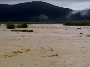 Râul Suceava la Straja