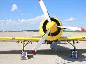 Avioanele au rămas la sol, având alături portretul comandorului Cornel Marinescuâ
