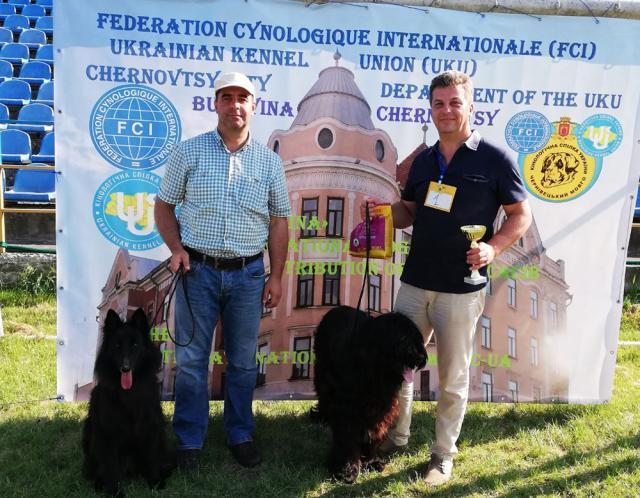 Cristian Domițian Moroșanu și Mircea Petrariu, cu cei doi câini campioni la juniori în România și Ucraina