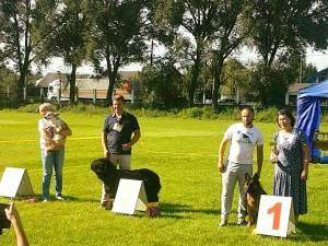 Doi câini de rasă din Suceava au devenit campioni de juniori ai Ucrainei