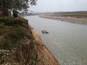 Mașina răsturnată în râul Suceava