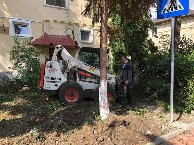 Amenajări peisagistice pe strada Vasile Bumbac, recent modernizată