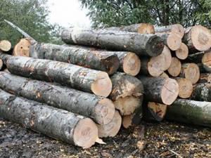 O autoutilitară și întreaga cantitate de lemn confiscate, în timpul unui transport ilegal