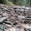 Locuitorii unui cătun din Brodina au stat izolaţi timp de o săptămână